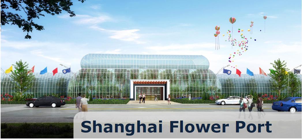 Shanghai Flower Port, Shanghai – China